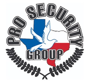Pro Security Group
