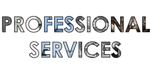Professional Services Directory Icon