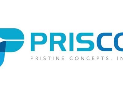 Pristine Concepts