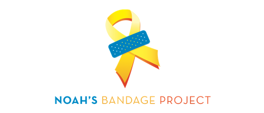 Noah's Bandage Project Committee Meeting