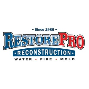 RestorePro Reconstruction