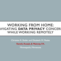 Working From Home. Navigating Data Privacy Concerns While Working Remotely