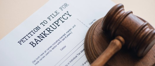 Legal Webinar: Understanding Bankruptcy from Filing to Judgement