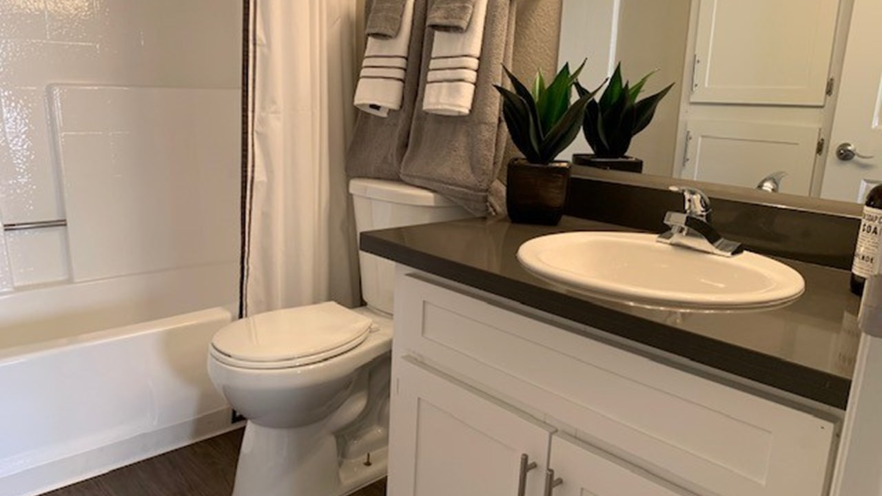 Bathroom Renovations After