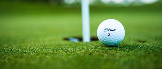 2021 Tucson AMAPAC/BGF Golfer Auction