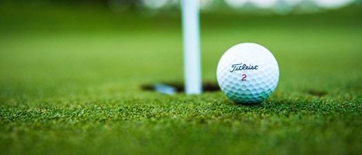 2020 Tucson AMAPAC/BGF Golfer Auction