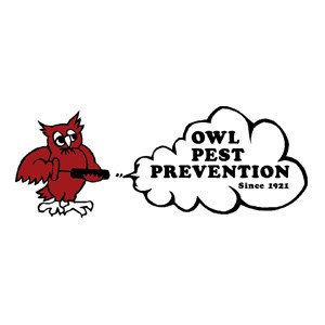 Owl Pest Prevention