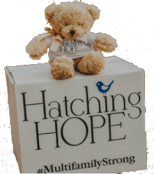 Buy a Box of Hope for Hatching Hope