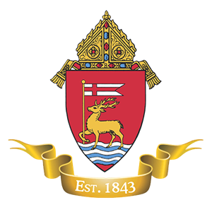 Photo of Archdiocese of Hartford