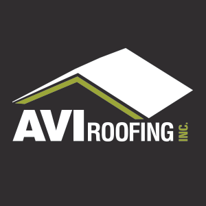 AVI Management Team