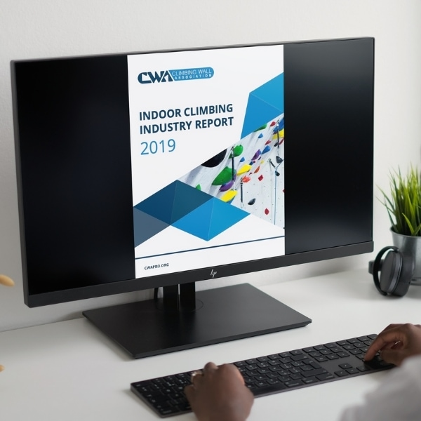 2019 Industry Report on a computer screen