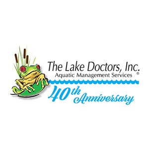 Lake Doctors, The