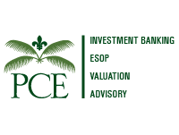 PCE Investment Banking