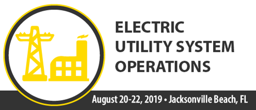 2019 Electric Utility System Operations