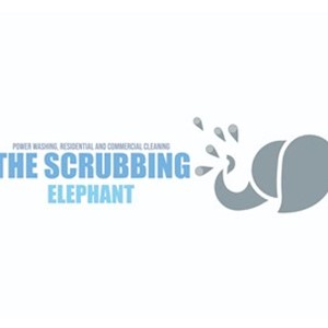 The Scrubbing Elephant