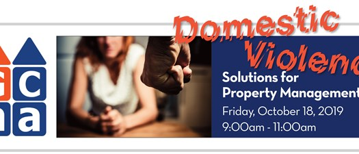 Domestic Violence Solutions for Property Management