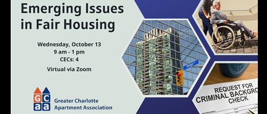 Virtual Emerging Issues in Fair Housing
