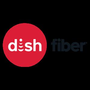 Dish Fiber