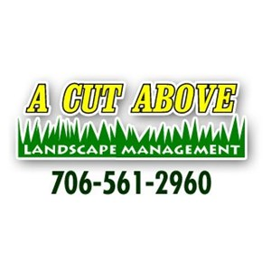 A Cut Above Landscaping Management