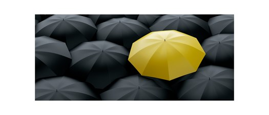 Stand Out From the Crowd, Create Your Brand Identity