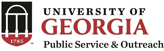 Georgia Certified Economic Developer Program - Motivation/Delegation