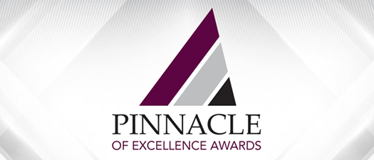 CANCELED 7th Annual Pinnacle of Excellence Awards 2021