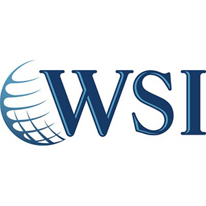 WSI Marketing Upside