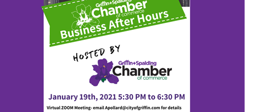 Business After Hours - Zoom