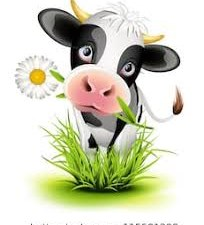 Chamber Cow Chip Bingo
