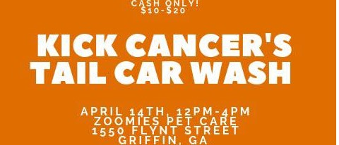 Kick Cancer's Tail Car Wash
