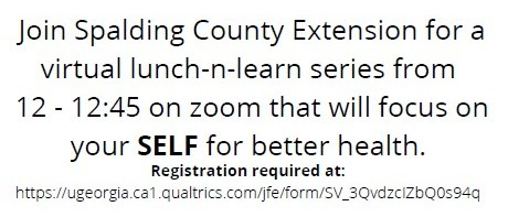 Spalding County Extension Lunch-n-Learn
