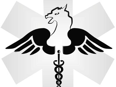 Griffin Locum Services Provider, Inc.
