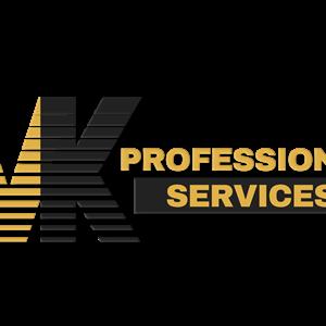 VK Professional Services LLC