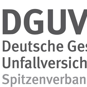 German Social Accident Insurance (DGUV)