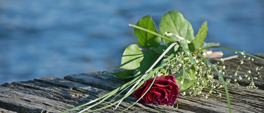 Green Burial: A Funeral Director's and Celebrant's Guide