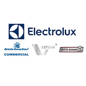 Electrolux Professional Inc