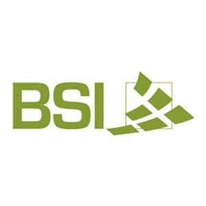 BSI, LLC