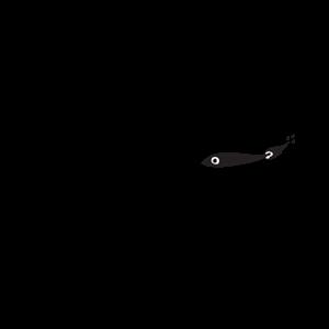 Photo of Lanternfish Press