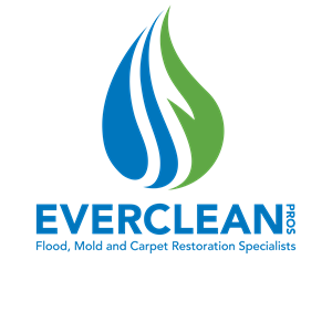 EverCleanPros