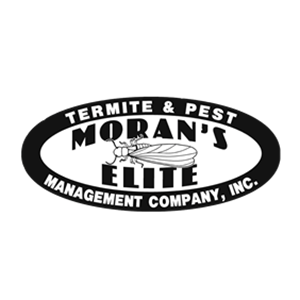 Moran's Elite Termite & Pest Management