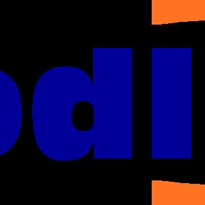 FoodLink Group Inc