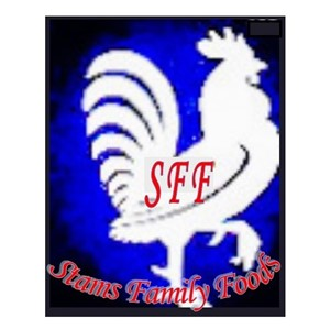 Stams Family Foods