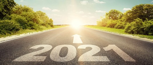 Virtual Roundtable - Trends and Business Opportunities for 2021