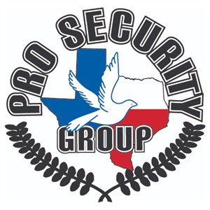 Pro Security Group Inc