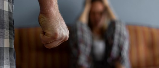 Landlords & Domestic Violence Laws