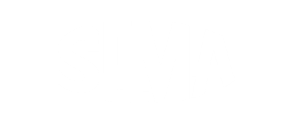 2021 SLMA D.C. Summit