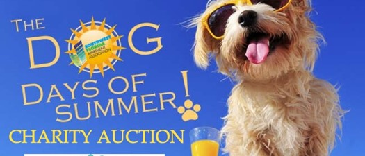 Dog Days of Summer Live Charity Auction