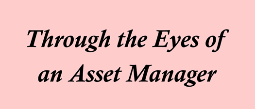Through the Eyes of an Asset Manager