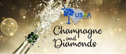 Champagne & Diamonds ~ July Monthly Networking Meeting