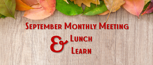 Lunch & Learn Monthly Networking Meeting